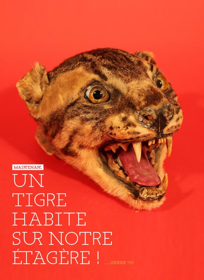 Un tigre sur une étagère