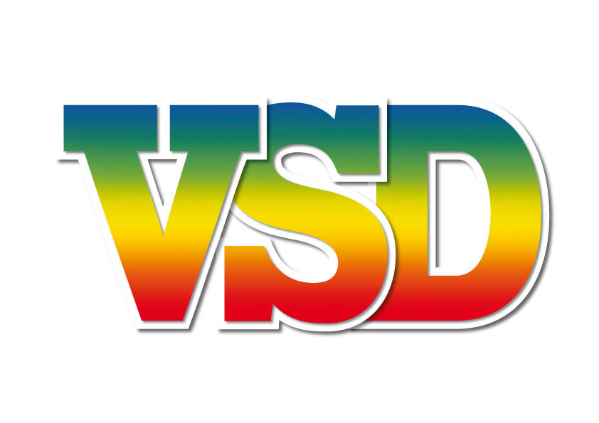 Image result for journal vsd