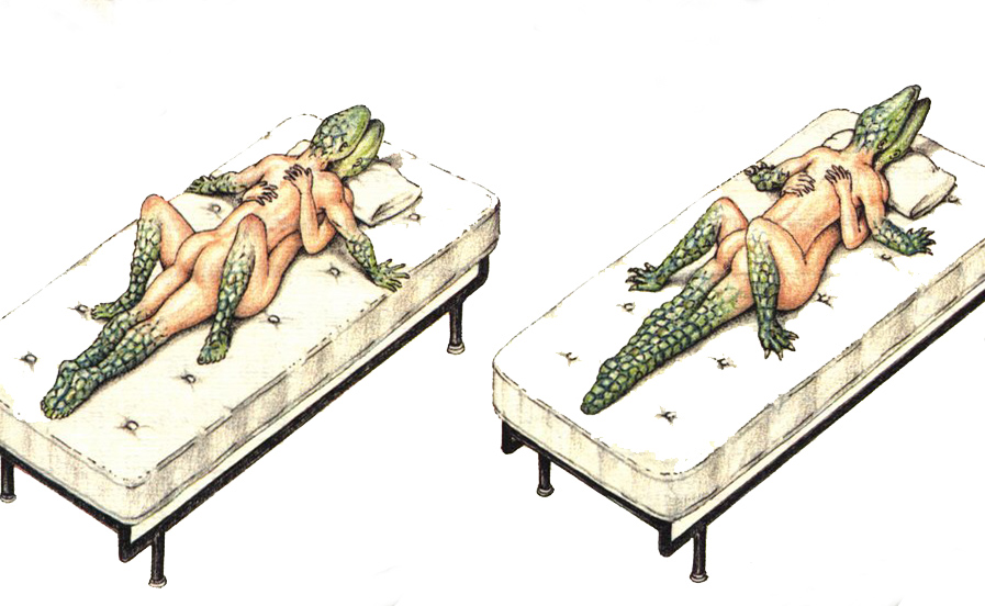 Look Inside the Extremely Rare Codex Seraphinianus the