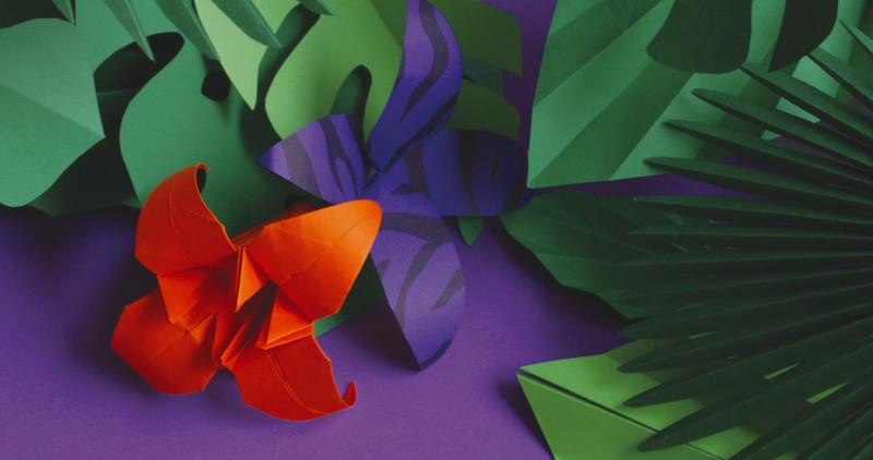 05-perouges-2015-flower-paper-craft-design