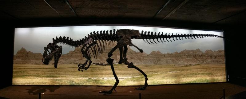 museum-geneve-50-ans